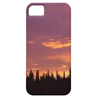 Sunrise Boreal Forest Alaska iPhone 5 Covers