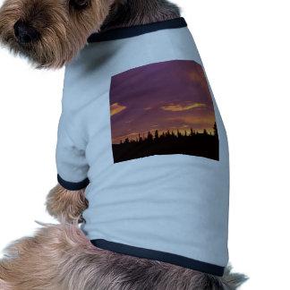 Sunrise Boreal Forest Alaska Pet Clothes