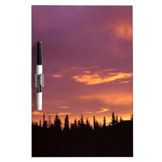 Sunrise Boreal Forest Alaska Dry-Erase Whiteboards