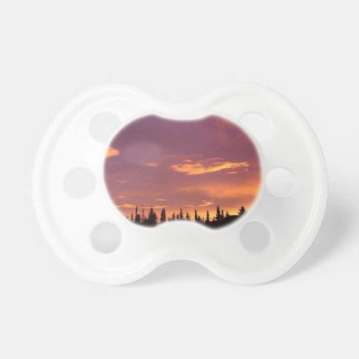 Sunrise Boreal Forest Alaska Pacifiers