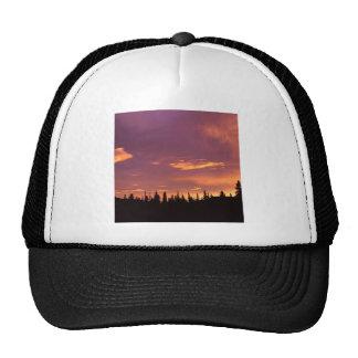 Sunrise Boreal Forest Alaska Hats
