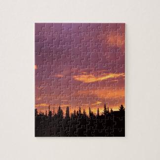 Sunrise Boreal Forest Alaska Puzzle