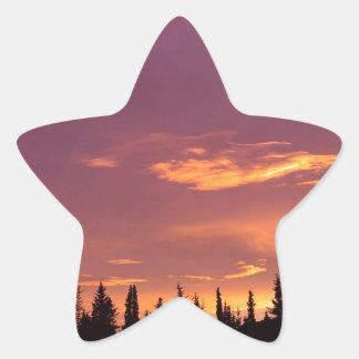 Sunrise Boreal Forest Alaska Star Sticker