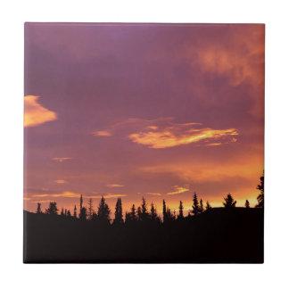 Sunrise Boreal Forest Alaska Tiles