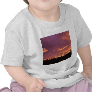 Sunrise Boreal Forest Alaska T Shirts