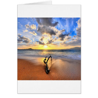 Sunrise Driftwood Beach Card