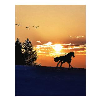 """Sunrise 8.5"""" X 11"""" Flyer"""