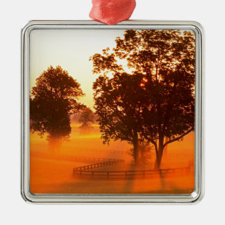 Sunrise Horse Farm Versailles Kentucky Silver-Colored Square Decoration