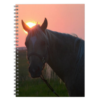 Sunrise Horse Spiral Notebook