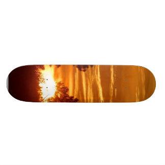 Sunrise In Louisiana Skateboards