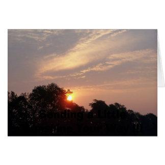 SUNRISE in NY, Card