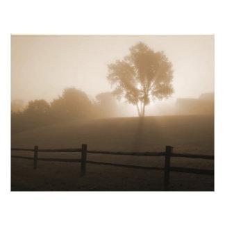 Sunrise in the Fog Flyer Design