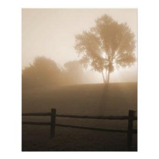 Sunrise in the Fog Full Color Flyer