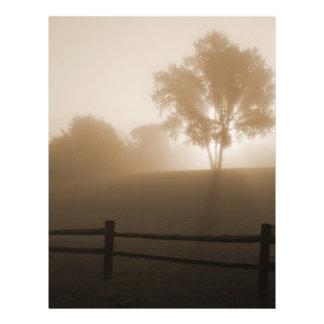 Sunrise in the Fog Flyer