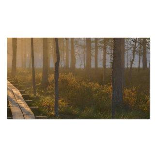 Sunrise in Viru bog at Lahemaa National Park Business Card Templates