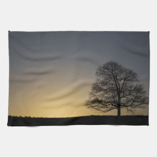 Sunrise Kitchen Towels