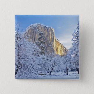 Sunrise light hits El Capitan through snowy 15 Cm Square Badge
