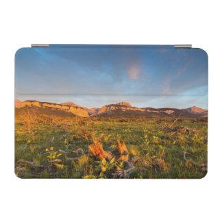 Sunrise Lights Blackleaf Canyon 2 iPad Mini Cover