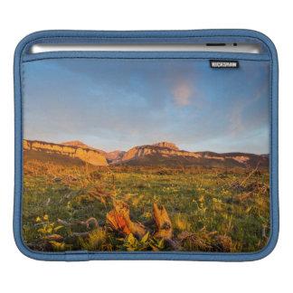 Sunrise Lights Blackleaf Canyon 2 iPad Sleeve