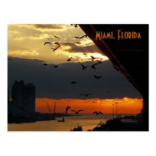 SUNRISE......    Miami, Florida Post Cards