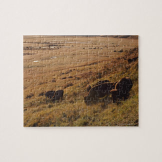 Sunrise On Bison Jigsaw Puzzle
