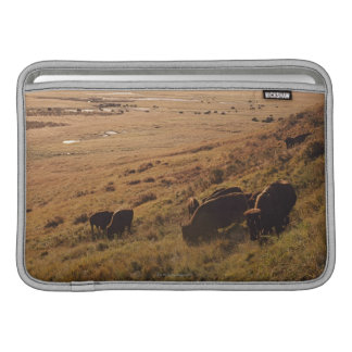 Sunrise On Bison MacBook Sleeve