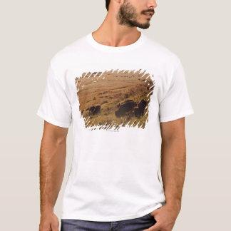 Sunrise On Bison T-Shirt