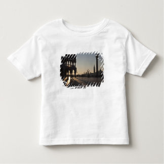 Sunrise on Plaza San Marco Toddler T-Shirt