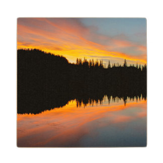 Sunrise paints sky over tree silhouette wood coaster
