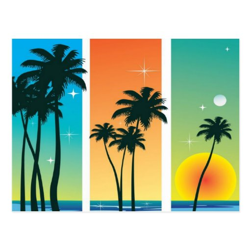 Sunrise Palm Trees and Moon Sparkle Beach Postcard