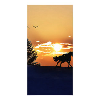 Sunrise Photo Card