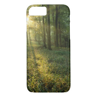 Sunrise through oak and hickory forest, Mammoth iPhone 8/7 Case