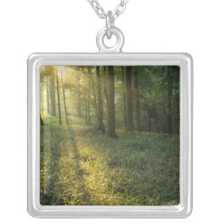 Sunrise through oak and hickory forest, Mammoth Personalized Necklace