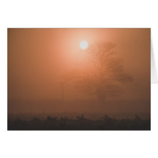 Sunrise through the mist greeting card. card