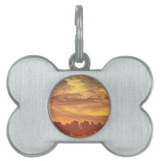 sunset-1643705 pet ID tag