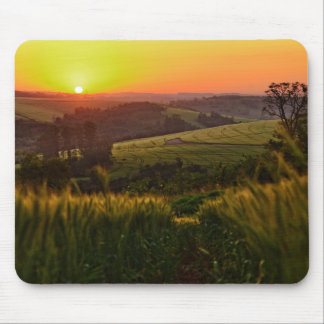 Sunset Agriculture Wheat Mouse Mat