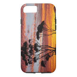 Sunset and Gum Tree, Binalong Bay, Bay of Fires, iPhone 8/7 Case