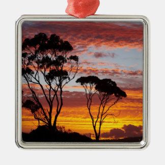 Sunset and Gum Tree, Binalong Bay, Bay of Fires, Silver-Colored Square Decoration