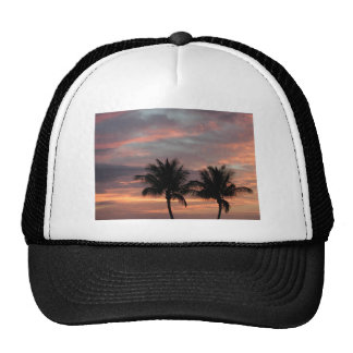 Sunset and palm trees cap