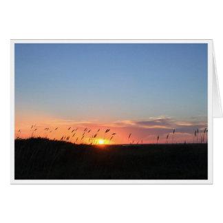 Sunset and Sea Oats on Matagorda Beach Card
