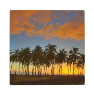 Sunset at National Historic Park Pu'uhonua o Wood Coaster