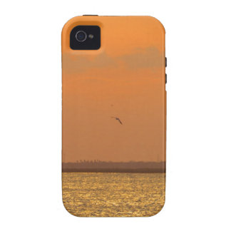Sunset at port Case-Mate iPhone 4 covers