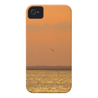 Sunset at port iPhone 4 covers