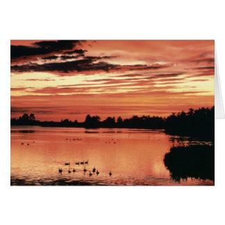 Sunset at Seney National Wildlife Refuge Card