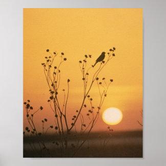 Sunset at Tewaukon National Wildlife Refuge Poster