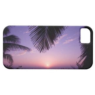 Sunset at West End, Cayman Brac, Cayman Islands, iPhone 5 Case