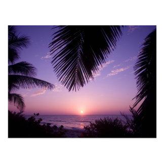 Sunset at West End, Cayman Brac, Cayman Islands, Postcard
