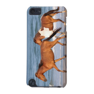 Sunset Beach Horse iPod Touch (5th Generation) Covers