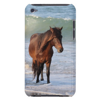 Sunset Beach Horse iPod Touch Covers