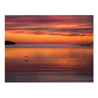 Sunset by the sea, Finland CC0157 Postcard